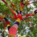 Met guerilla-breiwerk worden bomen in kunstwerken veranderd.