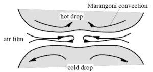 Marangoni-effect