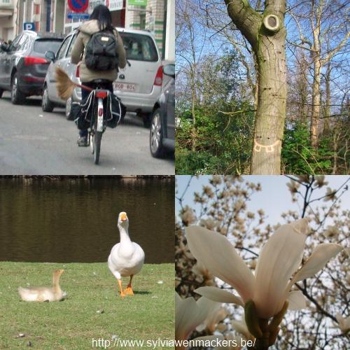 Maart 2012 in vier beelden.