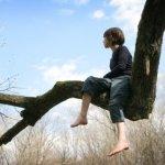 In bomen zitten is een eigenaardige gewoonte.
