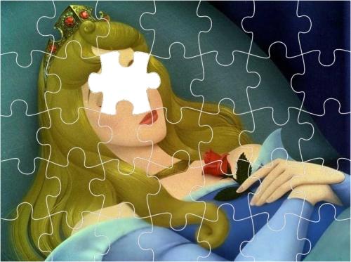 De puzzel van de Schone Slaapster.