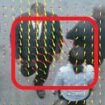 Sociale krachten, hier weergegeven door rode pijltjes, doen een persoon afwijken van de rechte lijn naar zijn doel. Bron: http://www.alexisoyama.com/pdf/AbnormalCrowdSocialForce_CVPR09.pdf